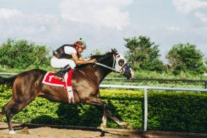 Det er muligt at spille på hestevæddeløb